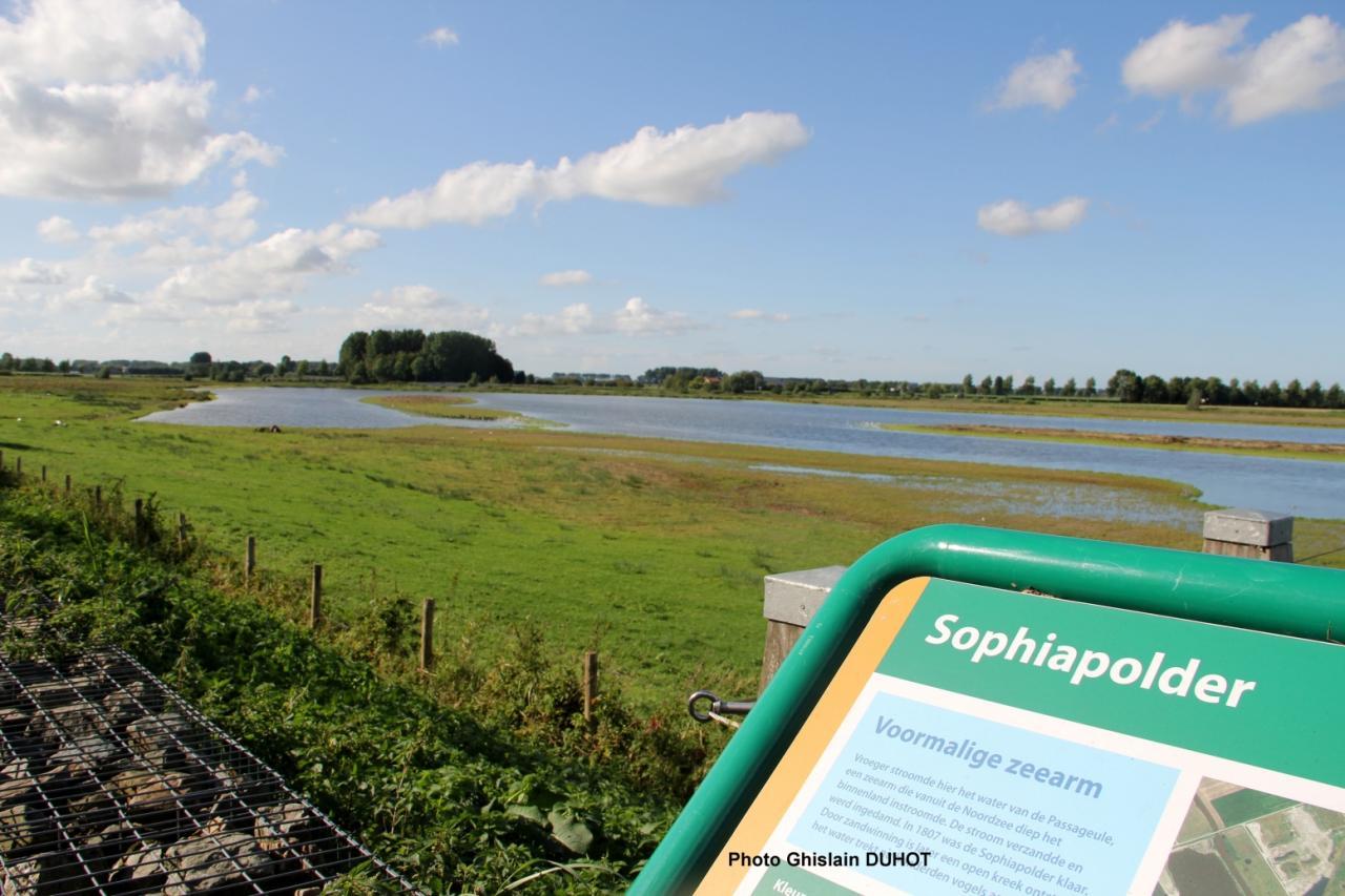 Sur les polders de Vandamme